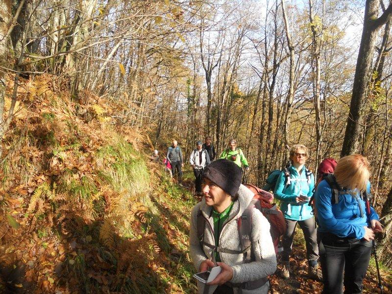 Inizio del sentiero verso i monti della sambuca Pistoiese