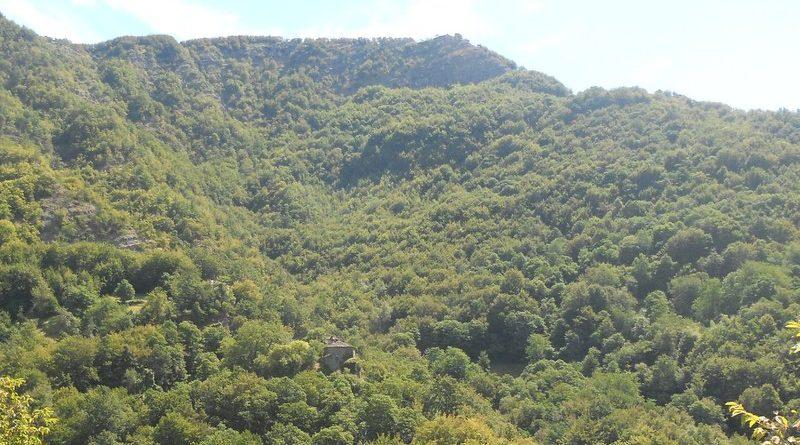 Chiapporato sulle pendici di Monte Calv