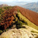 Sul crinale tra il Corno e Monte Gennaio per scoprire i colori dell' autunno
